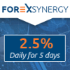 forexsynergy