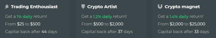 Инвестиционные планы проекта CoinBlock