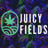 Juicy Fields Project Overview