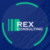 Обзор проекта Rex Consulting