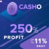 Обзор проекта Casho