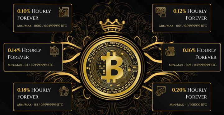 Инвестиционные планы проекта Royal Coin