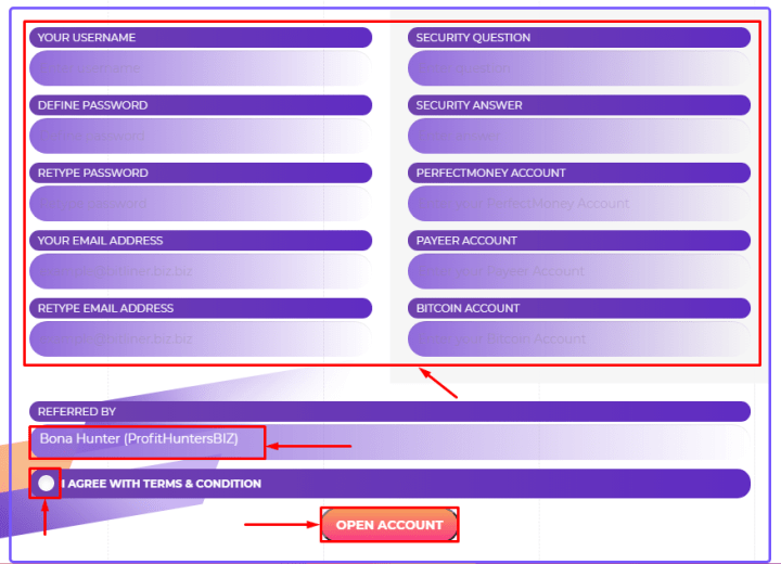 Регистрация в проекте Bitliner