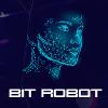 Обзор проекта Bit Robot
