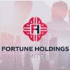 Обзор проекта Fortune Holdings