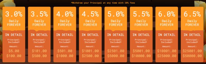Инвестиционные планы проекта Profminer