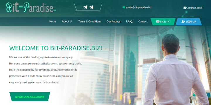 Обзор проекта Bit Paradise