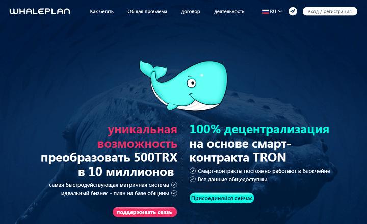 Обзор проекта Whale Plan