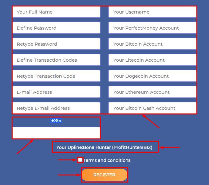 Регистрация в проекте Crypticy