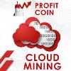 Обзор проекта Profit Coin