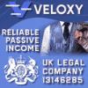 Обзор проекта Veloxy