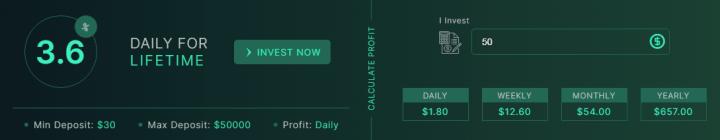 Инвестиционные планы проекта BitXeon