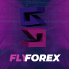 FlyForex project overview