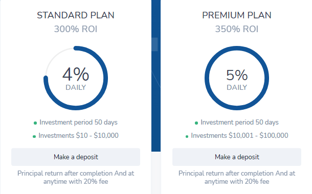 Инвестиционные планы проекта Infinily