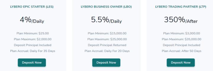Инвестиционные планы проекта Lybero