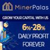 Обзор проекта MinerPalas