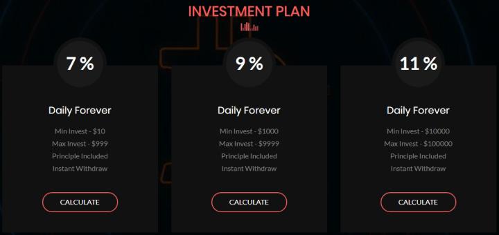 Инвестиционные планы проекта Bitpraz