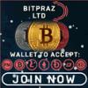 Обзор проекта Bitpraz