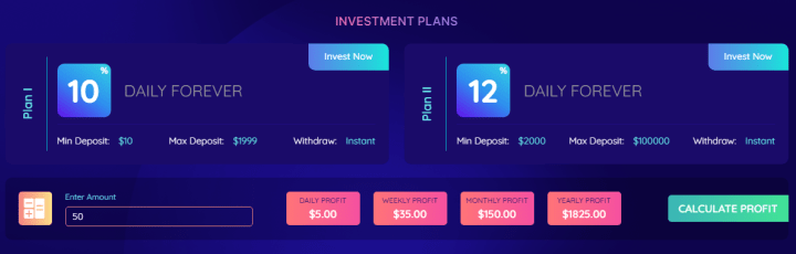Инвестиционные планы проекта Toptose