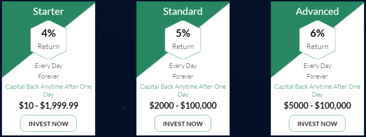 Инвестиционные планы проекта Bitvio