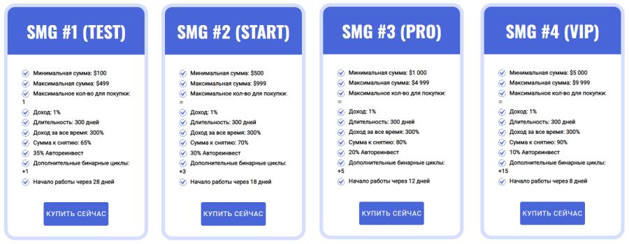 Plany inwestycyjne projektu SMG LTD