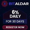 Przegląd projektu Bitaldar