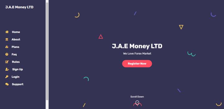 Обзор проекта Jaemoney
