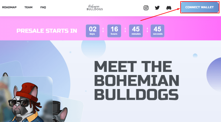 Подключение кошелька в проекте Bohemian Bulldogs